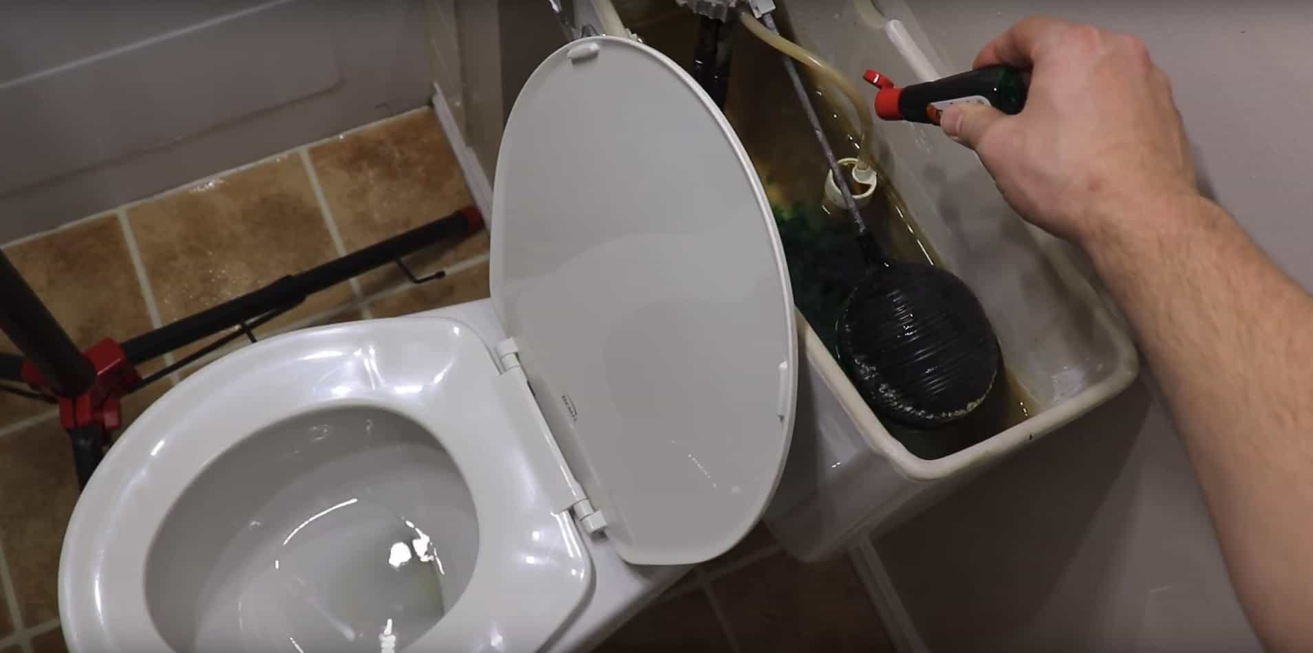 toilet bowl flapper replacement. Add food coloring to tank Toilet Flapper Replacement  Pros DIY