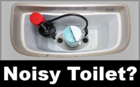 Noisy Toilet